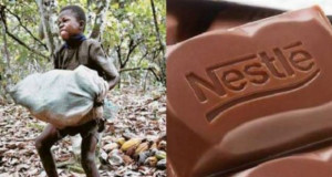 შოკოლადის 7 ბრენდი რომლებიც ბავშვების ექსპლოატაციას ახდენენ