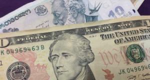 """""""ქართულ ბანკებს დოლარში სესხების გაცემა უნდა აეკრძალოს"""""""