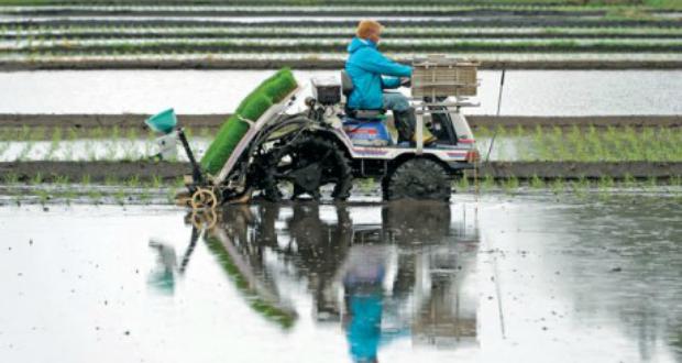 იაპონელი ფერმერების შემდეგი თაობა შესაძლოა რობოტები იყვნენ