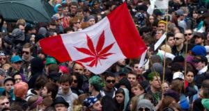 კანადის მთავრობას მარიხუანის ლეგალიზაცია სურს