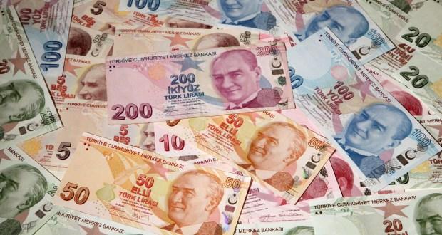 თურქეთი საქართველოს ეროვნული ვალუტებით ვაჭრობას სთავაზობს