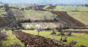 მიწის გაყიდვის აკრძალვის ინიციატივა - საფრთხეები და უპირატესობები