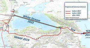 საქართველო White Stream-სა და W-Stream Caspian Pipeline Company-ის მეწილე ხდება