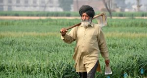ინდოეთში მიწის შეძენა უცხოელი მოქალაქეებისთვის მკაცრად აკრძალულია