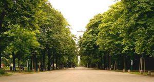 თბილისში ორი ახალი საქალაქო პარკის მოწყობა იგეგმება