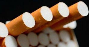 უნივერსიტეტების ტერიტორიაზე მოწევა შესაძლებელი ხდება