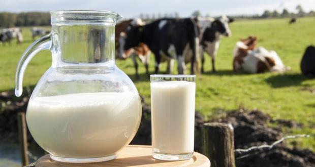 ოჯახებს, რომელთაც 2 ან მეტი ძროხა ჰყავთ და რძის ნაწარმს ყიდიან, 2020 წლიდან საფასურის გადახდა მოუწევთ