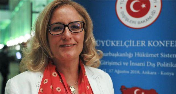თურქეთის ელჩი - ხანდახან ისეც ხდება, რომ ჰესებზე წინააღმდეგობას პოლიტიკური სარჩული აქვს