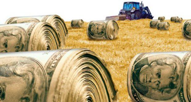 ბიზნესაქტივობაში მიწების ჩართვის პროცესი იგვიანებს - საქართველოში მიწების 80% სახელმწიფოს ეკუთვნის